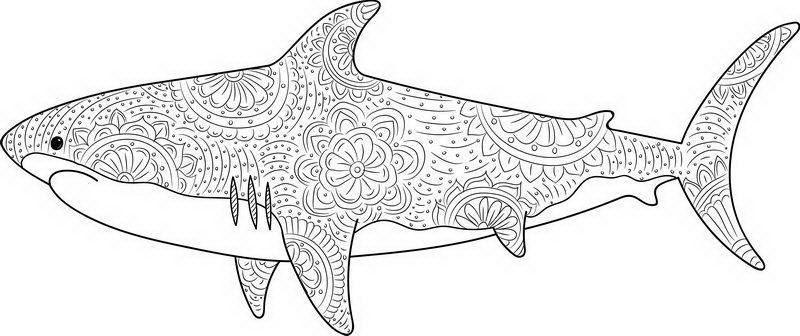 כריש מנדלה לצביעה