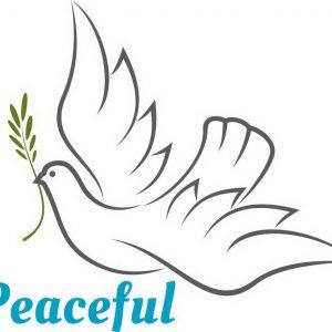 ציור יונת השלום לצפיעה