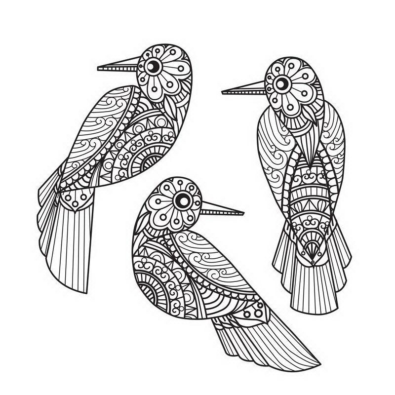 שלוש ציפורי מנדלה לצביעה