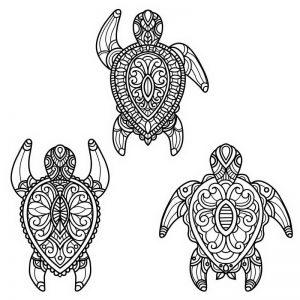 מנדלה 3 צבים שף צביעה