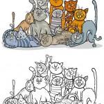 ערימת חתולים לצביעה