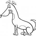 כלב לצביעה עם חיוך כובש